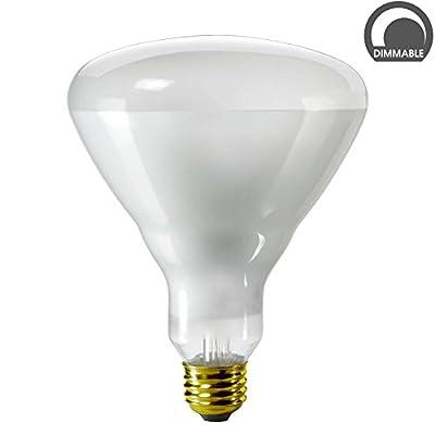 Luxrite LR20890 65BR40/120V 65-Watt BR40 Incandescent Reflector Flood Light Bulb, Frosted Finish, 500 Lumens, E26 medium Base