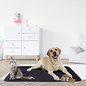 softan Waterproof 100% Leak Proof Blanket for Baby Adults Pets Dogs Cats,Pee Proof,3 Layer Protector