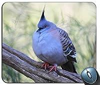 動物鳥Wild Pigeon 1パーソナライズされた長方形のマウスパッド、印刷された滑り止めゴム快適なカスタマイズされたコンピューターマウスパッドマウスマットマウスパッド