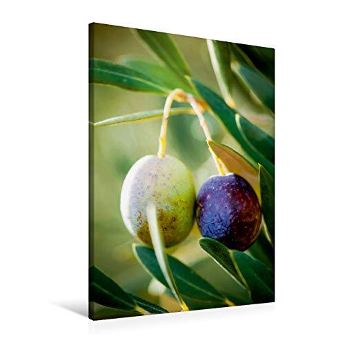 Lienzo premium de 60 cm x 90 cm de alto, impresiones mediterráneas, olivas verdes y negras en la luz del sol, imagen sobre bastidor. Árbol – un sueño de verano (CALVENDO Lifestyle);CALVENDO Lifestyle