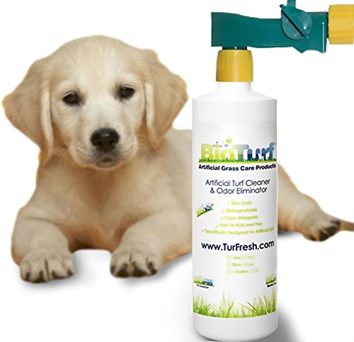BioTurf BioS+ Artificial Turf Pet Odor Eliminator and All Purpose Surface Cleaner. Our BioS+ Enzyme Technology Allows The Product to be Very Friendly to All Surfaces Including Tile, Carpet and Grass.