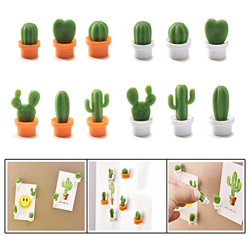 Decorative Refrigerator Magnets Perfect Fridge Magnets for House Office Personal Use Cactus