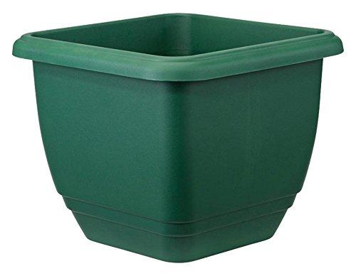 Stewart Plastics Ltd Altuna 2134019 - Balconera AUTORRIEGO Piazza 30 cm Verde