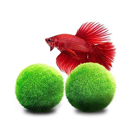 Luffy Giant Marimo Moss Balls, Aquarium Dekor oder ein perfektes Erbstück Geschenk, symbolisieren ewige Liebe, Glücksbringer, geliebt von Aquarium Haustiere, 2-teilig