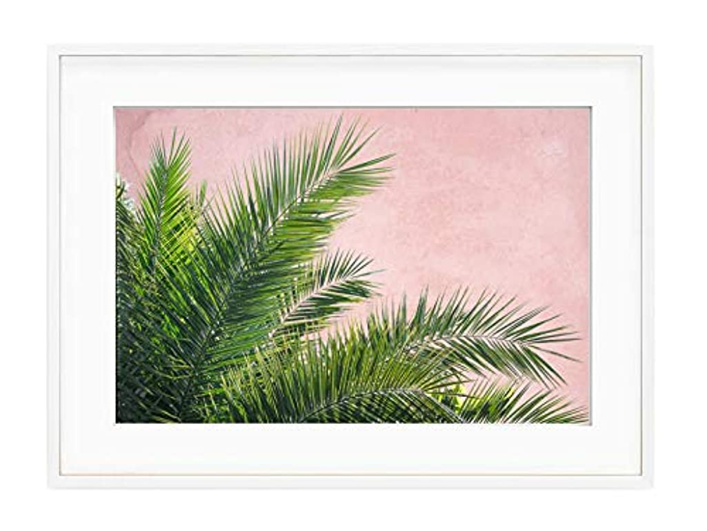 Plant on Pink Fins - Black Satin Aluminium Frame with Mount, Multicolored, 40x50