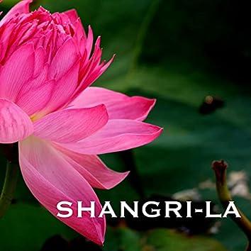 Shangri-La - Traditional Indian Meditation Music, Folk Songs, Sitar Instrumental Background for Mindfulness Meditations