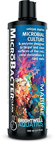 Brightwell Aquatics MicroBacter Clean - Microbial Culture & Enzyme Blend Designed to Target & Clean Surfaces of Aquatic Tanks, 500ML