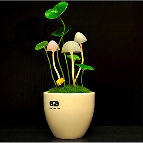 Yhhzw Sensor Controller Led Night Light Potted Plant Style Ceramics Shell Home Lights 110V 220V Euus Plug Table Lights Mushroom Lamp Size 12×12×16Cm