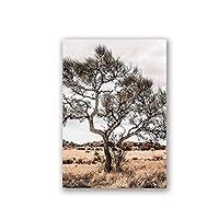 オーストラリアのアウトバック風景壁アートプリント砂漠の木の写真ポスターキャンバス絵画壁の写真自由奔放に生きるホームルームの装飾50x70cmフレームなし