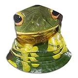 Leo-Shop Cute Black-Eyed Tree Frog Unisex Ski Headband Personalidad Microfiber Neck Warmer Neck Scarf Balaclava