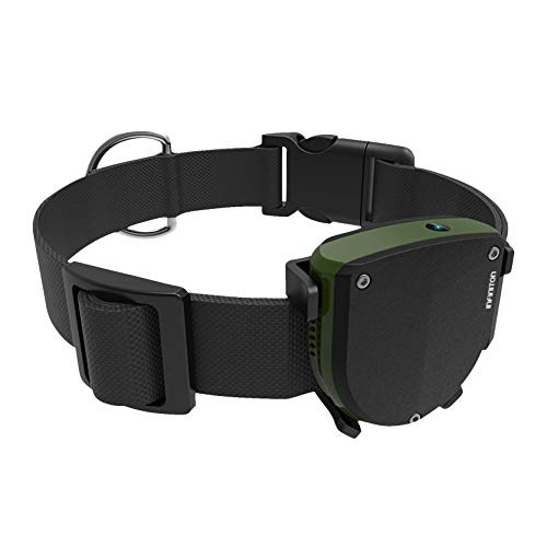 RASTREADOR GPS para Mascotas INFINITON Pet Tracker (Localizador GPS para Perro y Gatos, Ranura microSIM)