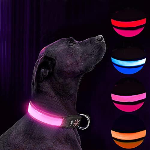 Collar de Perro LED Iluminado Collar de Perro USB Recargable Impermeable,Banda Nocturna para Perros con 3 Modos de Brillo,Hace Que su Perro Sea Visible,Seguro y Visto (Pink, S)