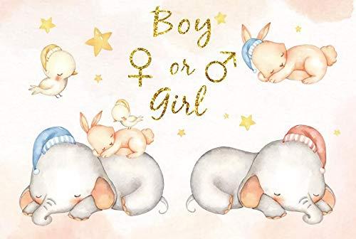 Hintergrundballon Meine erste Kommunikationsparty Junge oder Mädchen Poster Punkt...