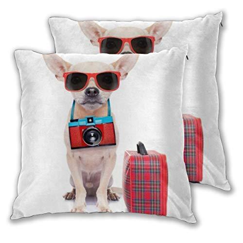 DECISAIYA Funda de Cojín Suave,Shades Chihuahua Dog Camera Ready Viaje Equipaje Verano Deportes Recreación Cool Suitcase,Funda de Almohada Cuadrado para Sofá Cama Decoración para Hogar