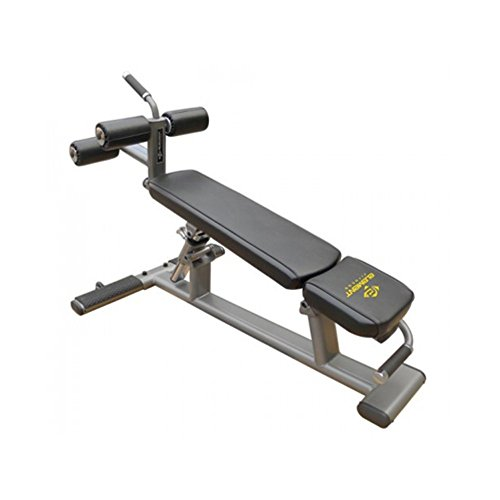 Where To Buy Element Fitness Commercial Ab Crunch Bench Roxanne Brittingham G9