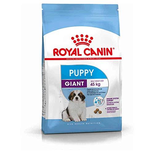 Royal Canin Giant Puppy 34 pupenvoer, 15 kg - hondenvoer