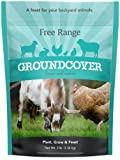 Barenbrug Free Range GroundCover Forage Seed Mixture Ideal for Chickens, Game...