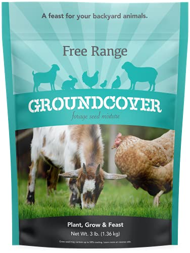 Barenbrug free range groundcover forage seed mixture ideal for...