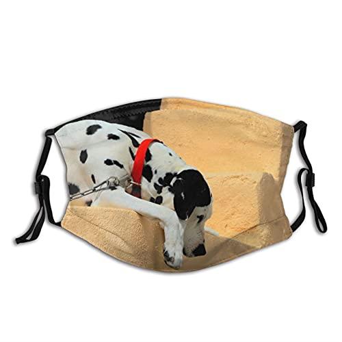 Reebos Maskk - Collar para perro unisex con diseño de perro dálmata con bucle de oreja ajustable, lavable, para exteriores, deportes, ir de compras