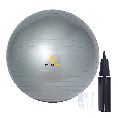 45-cm PRIMASOLE Exercise Ball w/ Inflator Pump (Pale Gray) $7.70 + Free Shipping w/ Prime or on $25+