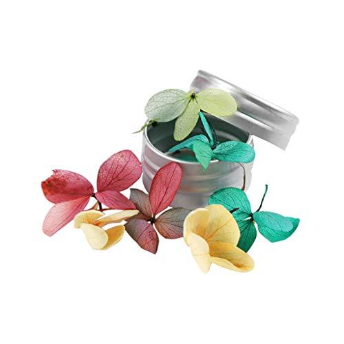 Cuteelf 12 Farben 3D Nagel echte Trockenblume Nail Art Tipps Dekoration Applikation Nagel Aufkleber Nail Art Zubehör