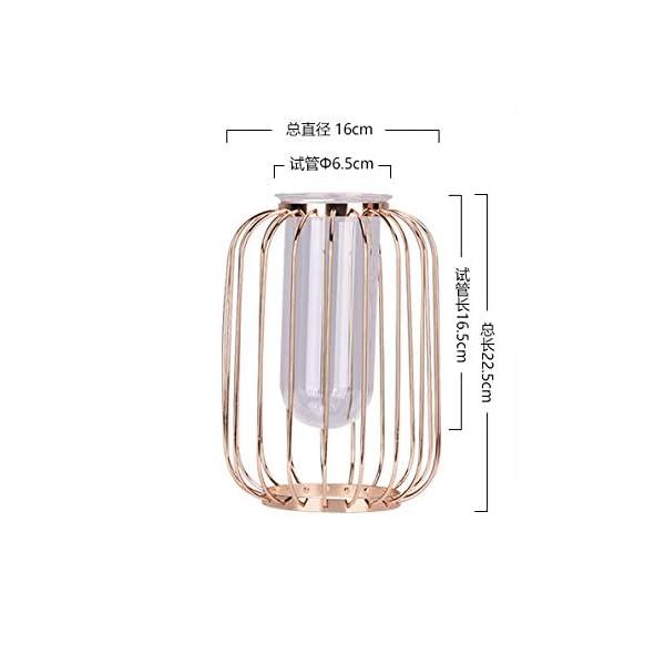 Jarrón de oro en forma de linterna de hierro forjado, candelabro de alambre de tubo de vidrio, maceta adecuada para…