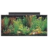 SeaClear 40 gal Acrylic Aquarium Combo Set, 36 by 15 by 16', Black