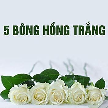 Năm bông hồng trắng
