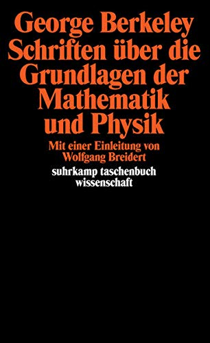 Schriften über die Grundlagen der Mathematik und Physik (suhrkamp taschenbuch wissenschaft)