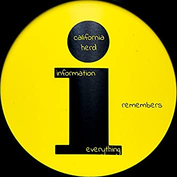 Information Remembers Everything - Single