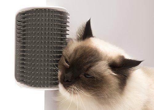 Catit Senses Brosse/Auto Toiletteur pour Chat