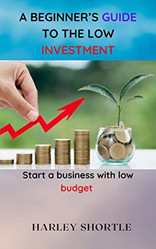 A BEGINNER'S GUIDE TO THE LOW INVESTMENT: Start a business with low...