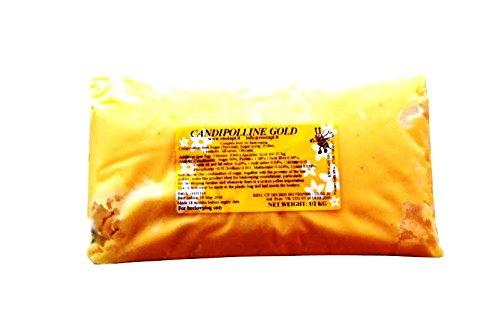 24 X Candipolline Gold Komplettfutter für Bienen HALBES KILO Tüten