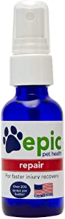 Repair Natural Electrolyte Odorless Pet Supplement for Faster Injury and Illness Recovery