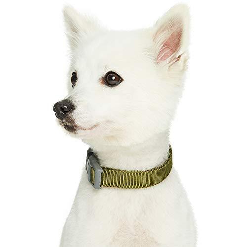 Umi. Essential Classic - Collar para Perros L, Cuello 45-66 cm, Collares Ajustables para Perros (Verde Oliva)