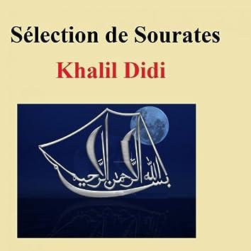 Sélection De Sourates (Quran - Coran - Islam)