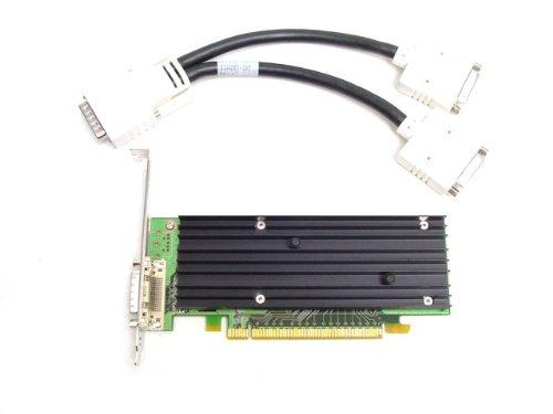 NVIDIA Quadro NVS 290 - Tarjeta gráfica (PCI-E, Doble Monitor, DVI)