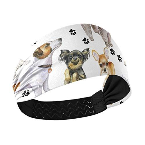 DOMIKING Diadema deportiva para mujer – Bonitos perros unisex para entrenamiento de sudor para hombres que absorbe la humedad banda para el cabello para yoga, gimnasio, correr, atletismo