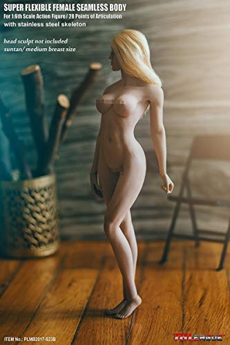 ZSMD 1/6 Female Super Flexible Seamless Body Pale Action Figure (S23B)