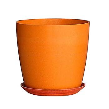 Best orange plant pot Reviews
