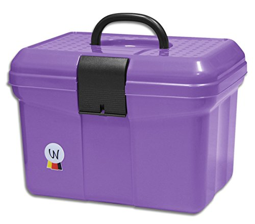 Amesbichler Waldhausen - Valigetta per la pulizia con manico richiudibile, divisore regolabile, colore: Lilla