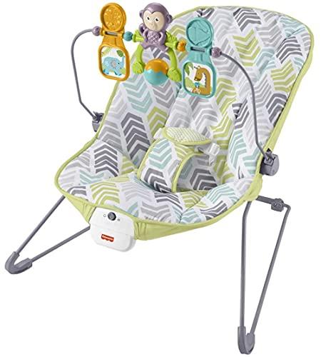 Fisher-Price Baby Bouncer, Flecha Dinámica