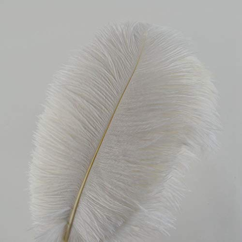 Sowder 12-14inch(30-35cm) Ostrich Feathers Plume Wedding Centerpieces Home Decoration Pack of 10pcs(White)