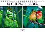 Dschungelleben - Tierportraits (Tischkalender 2021 DIN A5 quer)