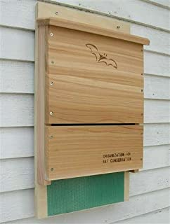 Looker Songbird Essentials Organization for Bat Conservation (OBC) Single Chamber Bat House