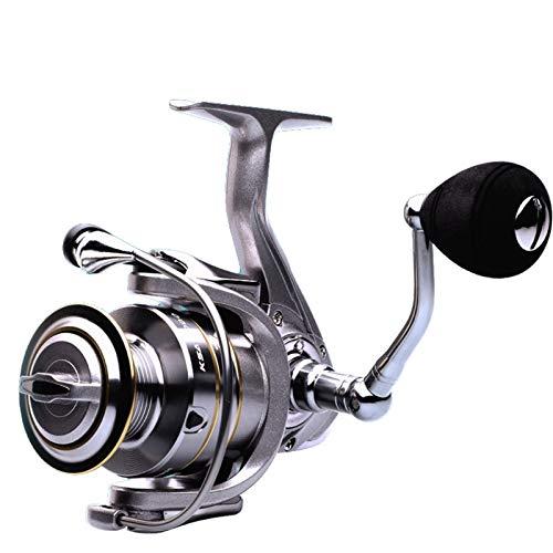 DDoyci 14 + 1 BB Carrete de Pesca Doble 5.5: 1 índice de Engranajes Carrete de Hilado de Alta Velocidad carretes de Pesca de Carpa (Spool Capacity : 4000 Series)