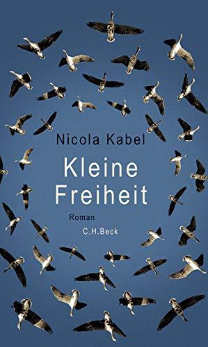 Kleine Freiheit: Roman