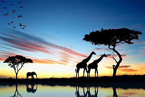 WFYY Puzzles 1000 Piezas, África Vida Salvaje, Vista De La Naturaleza De Sudáfrica 75X50Cm