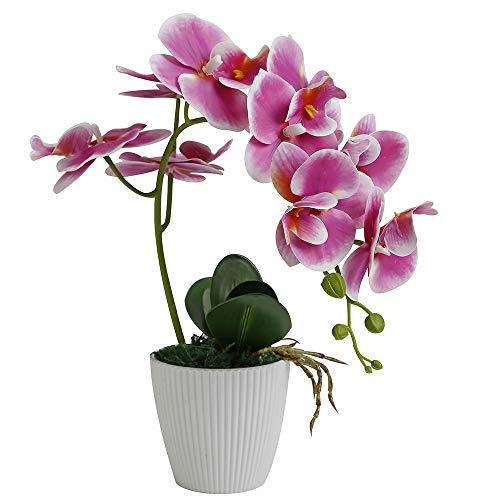 LIVILAN Artificial Orchid Flower Phalaenopsis Fake Flower Bonsai for Home Table Decor with Stripe Vase Rose Lilac Purple