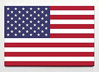 Flag of USA United States of America fridge magnet Washington travel souvenir